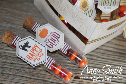September 2016 Paper Pumpkin Kit Something Good To Eat Halloween Treats in test tubes
