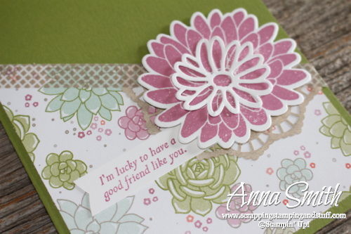 Succulents for a Special Reason Friendship Card