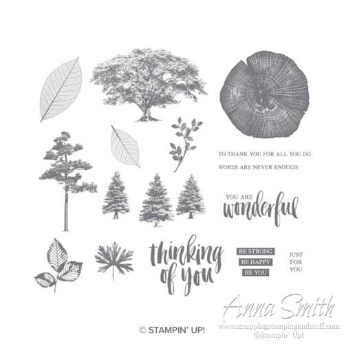 Stampin' Up! Rooted in Nature Stamp Set