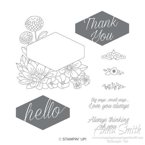 Stampin' Up! Accented Blooms Stamp set