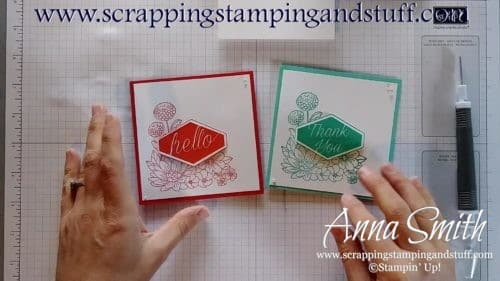 Quick card tutorial for hello and thank you cards using the Stampin' Up! Accented Blooms stamp set and Tailored Tag Punch - a card in 4 minutes!