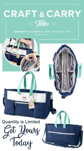 The Stampin' Up! Craft and Carry Tote bag is amazing! It was designed by crafters with craft supplies specifically in mind!