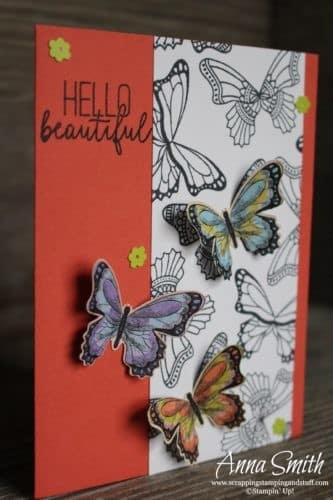 Occasions Catalog Sneak Peeks! Stampin' Up! Butterfly Gala card idea