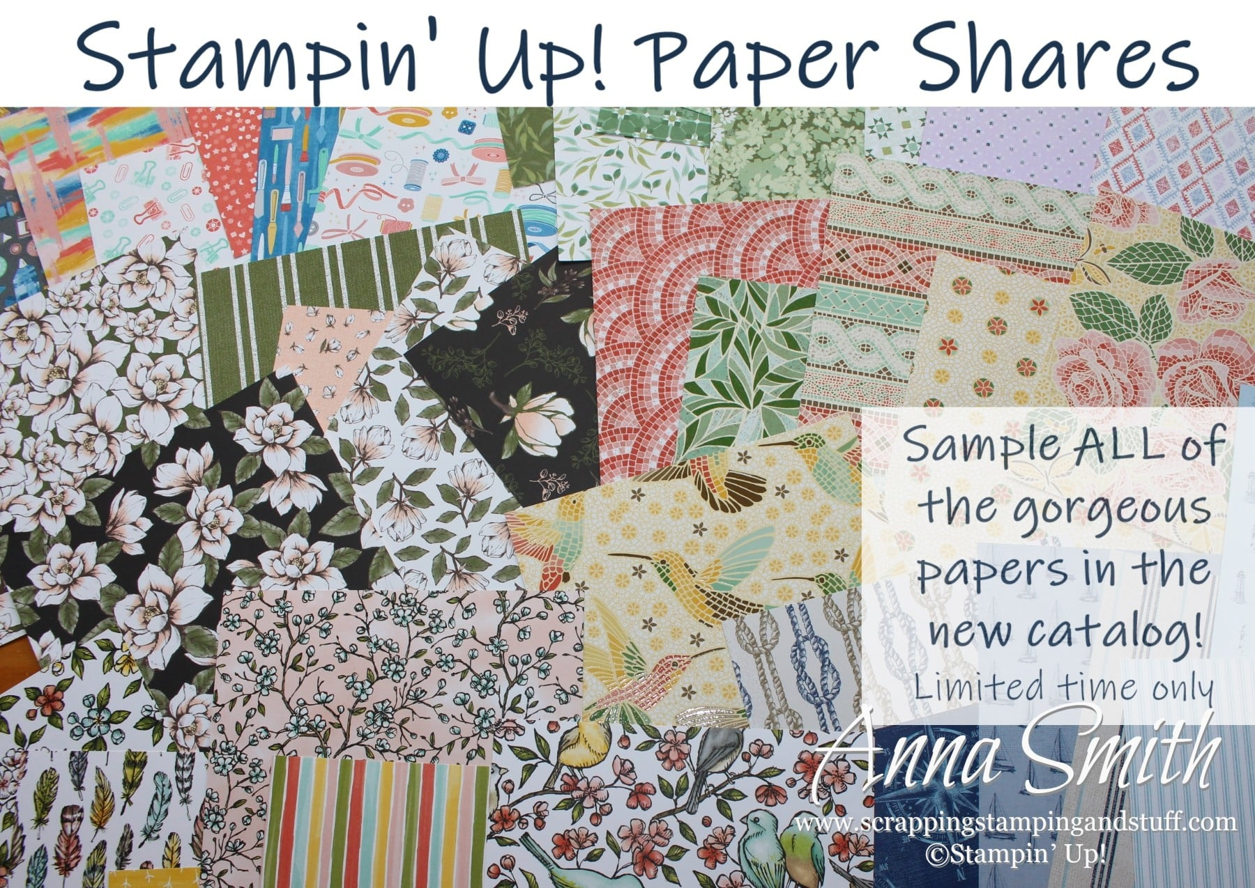 Paper Shares Available!