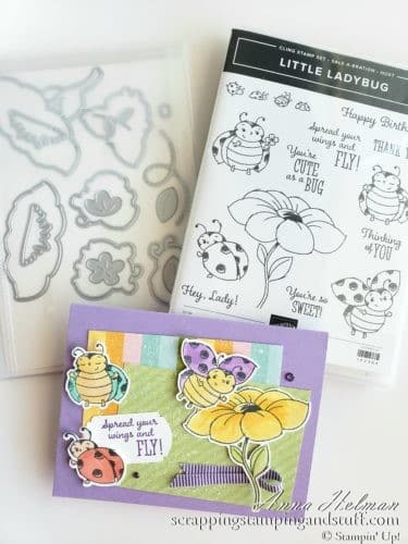 Adorable ladybug card made with Stampin Up ladybug stamp and die set - Little Ladybug stamp set and the coordination product release