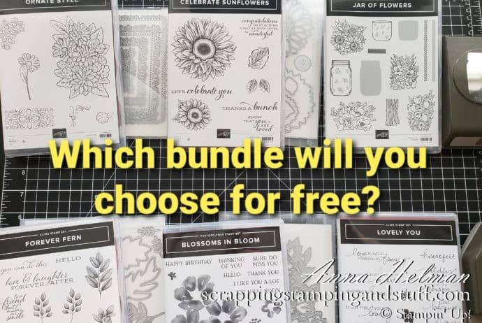 Choose a Free Stampin Up Bundle in June Only! Choose A Stamp And Die Bundle Or A Stamp And Punch Bundle