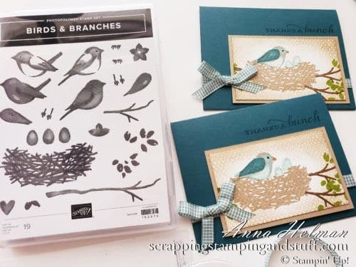 Create This Simple Bird Next Scene Card In A Few Minutes Without Dies Or Fancy Techniques Using Stampin Up Birds And Branches